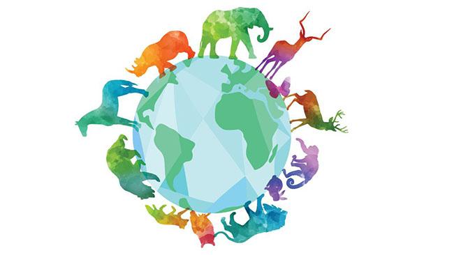 Міжнародний фонд охорони природи «Conservation International» оголосив прийом заявок на конкурс